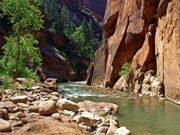 Zion_National_Park_26-1834-668-600-100