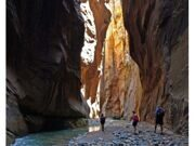 Zion_National_Park_27-1835-668-600-100